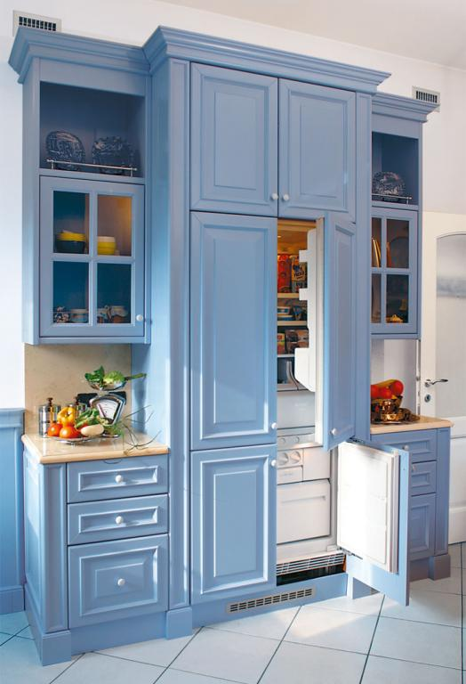 Fridge and freezer incorporated into a single piece of decorated furniture
